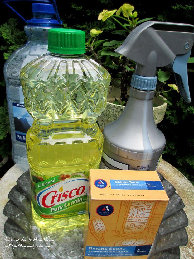 instructions for dormant oil