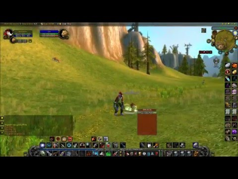 Level 19 hunter twink guide vanilla pet