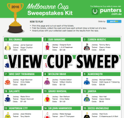 2017 melbourne cup sweep pdf