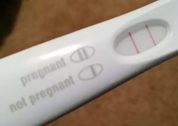 true line pregnancy test instructions