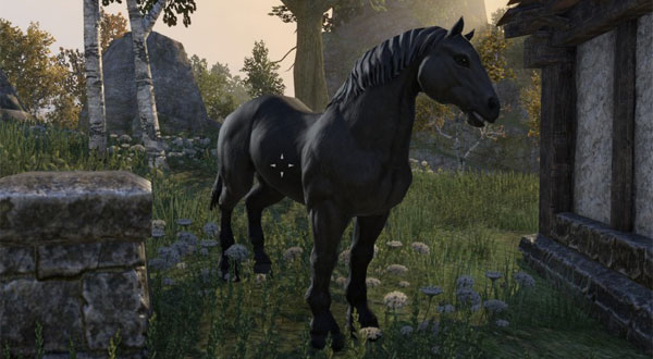 The elder scrolls online mount guide